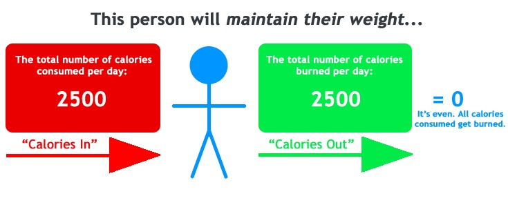 calorie intake to lose weight - maintenance level